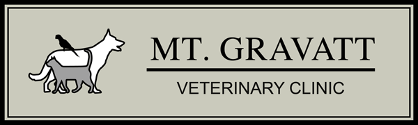 Mt. Gravatt Veterinary Clinic logo